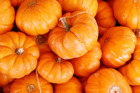 pumpkin healthy foods