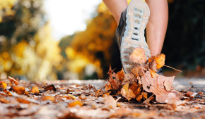 Fall Fitness Tips | TITLE Boxing Club