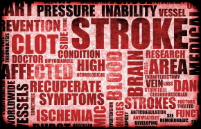TITLE Boxing Club | Health Basics: What are Strokes and How Can I Prevent Them?